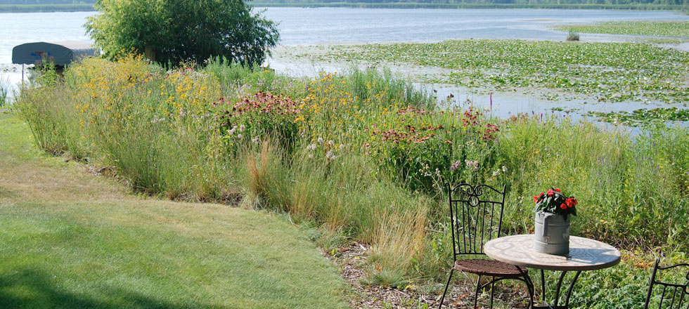 Natural Shore Technologies Inc An Ecological Restoration Company