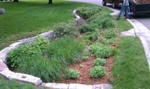 Raingarden maintenance and upkeep is important