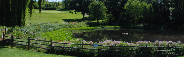 Golf Course Pond Restoration