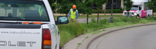 Roadside Prairie Maintenance