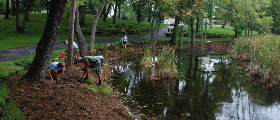 Pond Shoreline Restoration