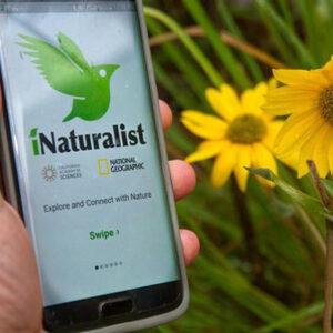iNaturalist App1